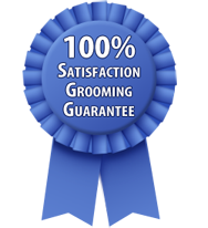 New Westminster Dog Groomer Satisfaction Guarantee